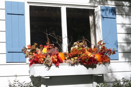 autumn-window-boxes-orange
