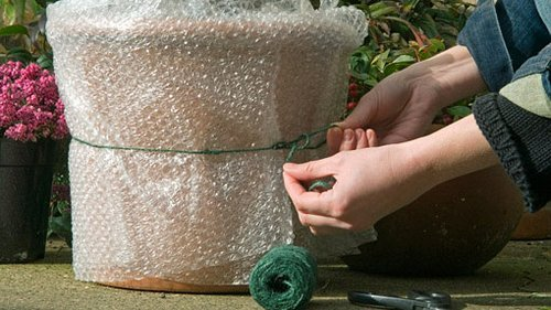 bubble-wrap protection
