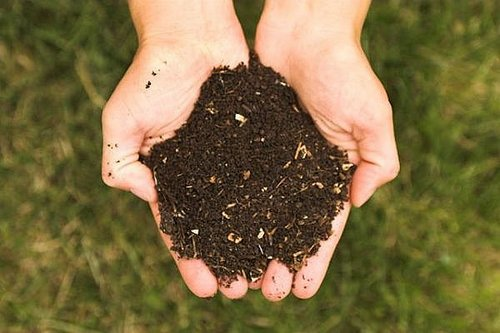 compost easy