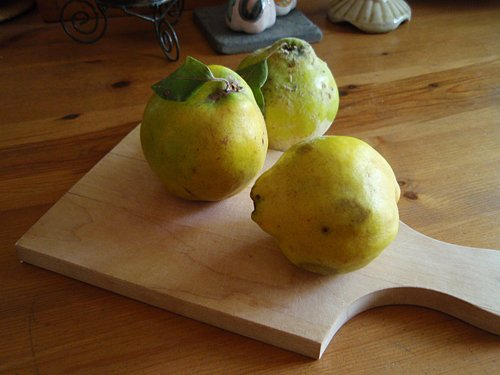 quinces-fruit-yellow