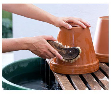 cleaning-pot