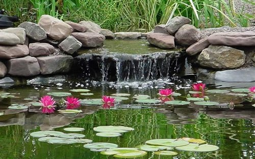 Cool backyard pond design ideas design ideas for house Design pond