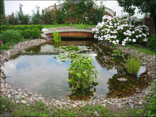 Create your own oasis in a backyard for Best pond design