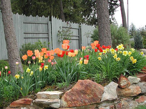 Home Garden Ideas trendy garden exterior small garden design idea charming garden ideas also small garden design idea lawn Country Living Tulip Garden