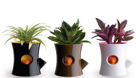 Design Of Your Garden : Plant Pot Holders
