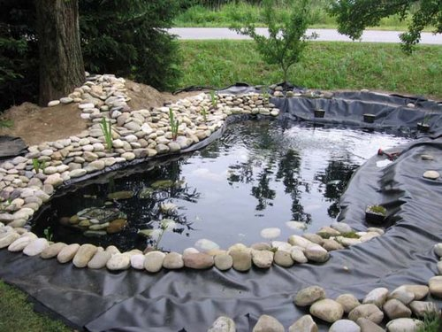 Garden Design Having A Beautiful Water Garden wwwcoolgardenme