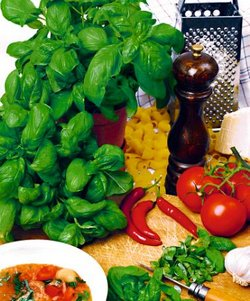basil-kitchen