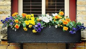 Choose Flowers For Window Boxes