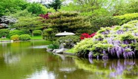 Japanese Gardening: The Magic of Japanese Gardens
