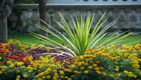 Perfect Flower Bed Ideas