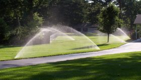 How Much Water Does A Lawn Really Need?