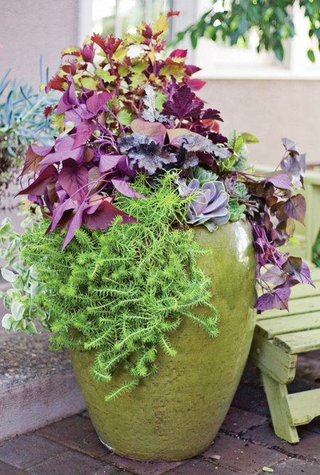 flower pot ideas fall flowers in containers 13330