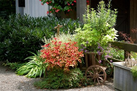 Fall Flowers In Containers