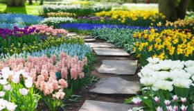 Planting Bulbs In The 'Natural Way'
