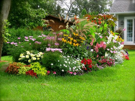 Which garden is perfect for you if you do a quick internet search for your area you can probably find a list of flowers that will bring your flower garden to life mightylinksfo Choice Image