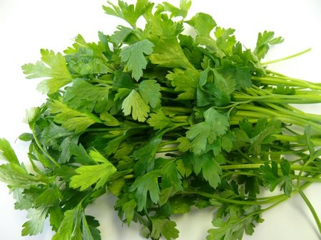 parsley-italian