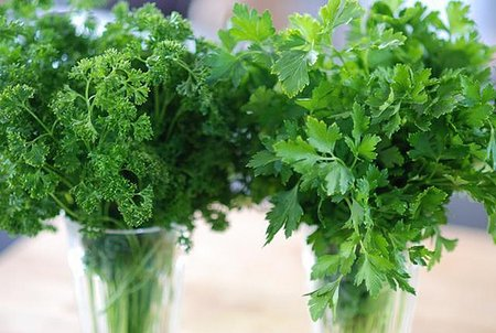parsley-types