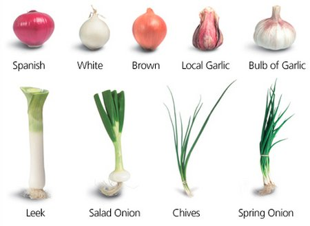 Onions Garlics And Leeks