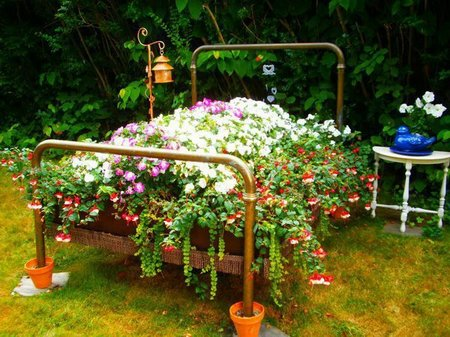 the best flower gardening  .coolgarden, Beautiful flower