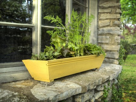 window-box-garden