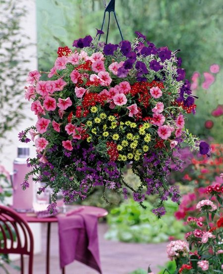 hanging-basket7