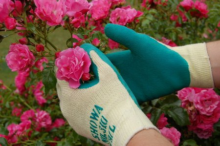 showa-gardening-gloves