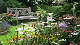 3 Tips to gardening your yard this summer