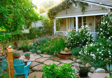 organic-rose-gardening1