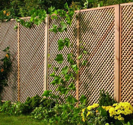 Exceptional Where A Garden Is Surrounded By High Boundaries, More Open Garden Screens  Often Work Better Than Solid Divisions, Leading The Eye Down From The  Perimeter, ...