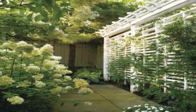 Garden Screens And Dividers