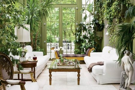 Nearly All Indoor Plants Will Flourish If The Temperature Is Kept Within 55 75 F Range Most Types Grow Quite Hily In Rooms Which Are A Little