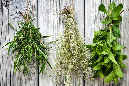 kitchen-herbs