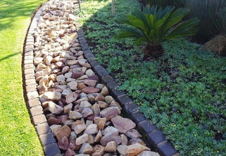 Water And Drainage Planting In Dry And Wet Soil wwwcoolgardenme