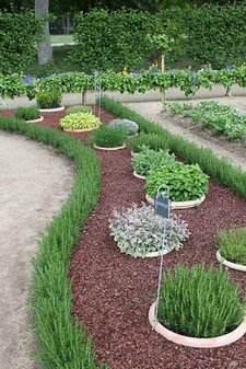 Some Plants Will Tolerate Being Walked On Occasionally, So Could Form An  Edging. Reasonably Tough Carpeters Of This Kind Include The Thymes, ...