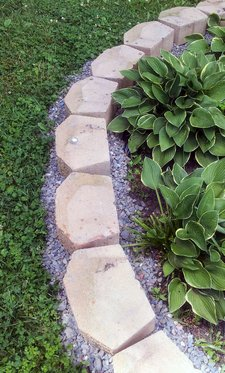 hostas-edging