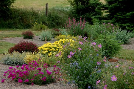 ... Plants. A Mulch Can Be Applied At Any Time During The Growing Season,  However, Mulching Early In The Season, Just After Preparing The Soil And  Planting, ...