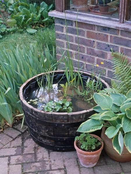 Barrel garden american preppers network view topic a for Garden pool doomsday preppers