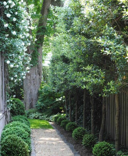 Special Considerations When Designing Your Garden wwwcoolgardenme