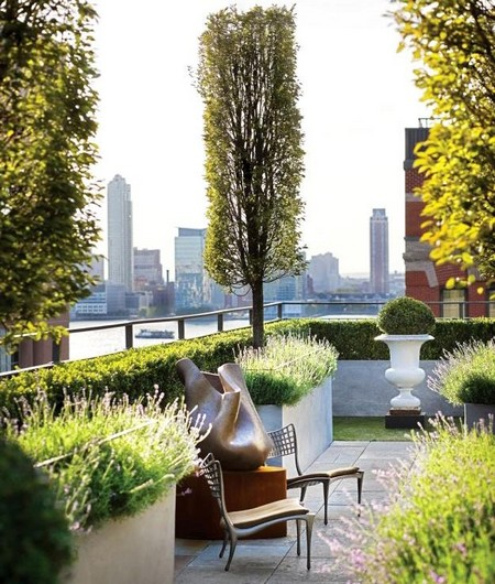Roof garden with potted trees for Terrace trees