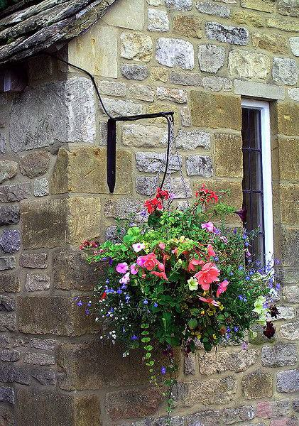 Hanging-basket22