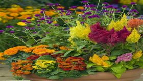 Must-Have Fall Flowers For Colorful Garden