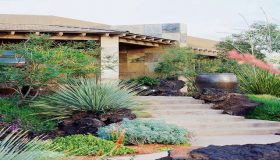 Desert Gardening: Create Your Summer Garden In The Desert