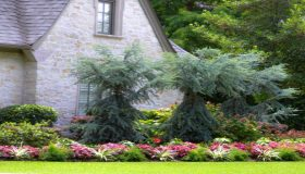 Using A Scented Trees And Shrubs For Your Landscape