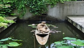Water Garden: Place For Relaxation And Enjoyment